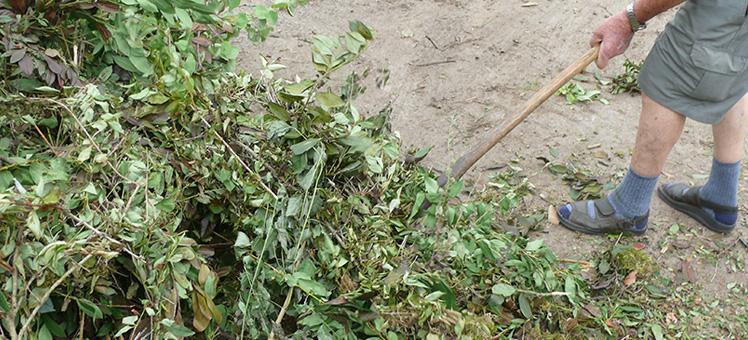 Grünschnitt-Sammelplätze / Kompostierungsanlagen